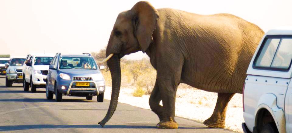 Namibia5
