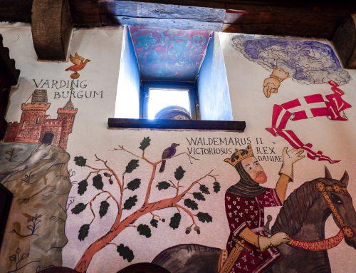 Dannebrog fejrer 800-års jubilæum